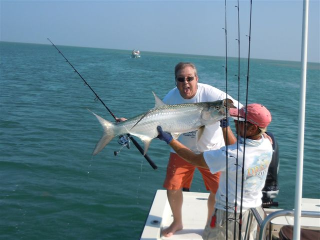 key west fishing for tarpon florida keys fishing report