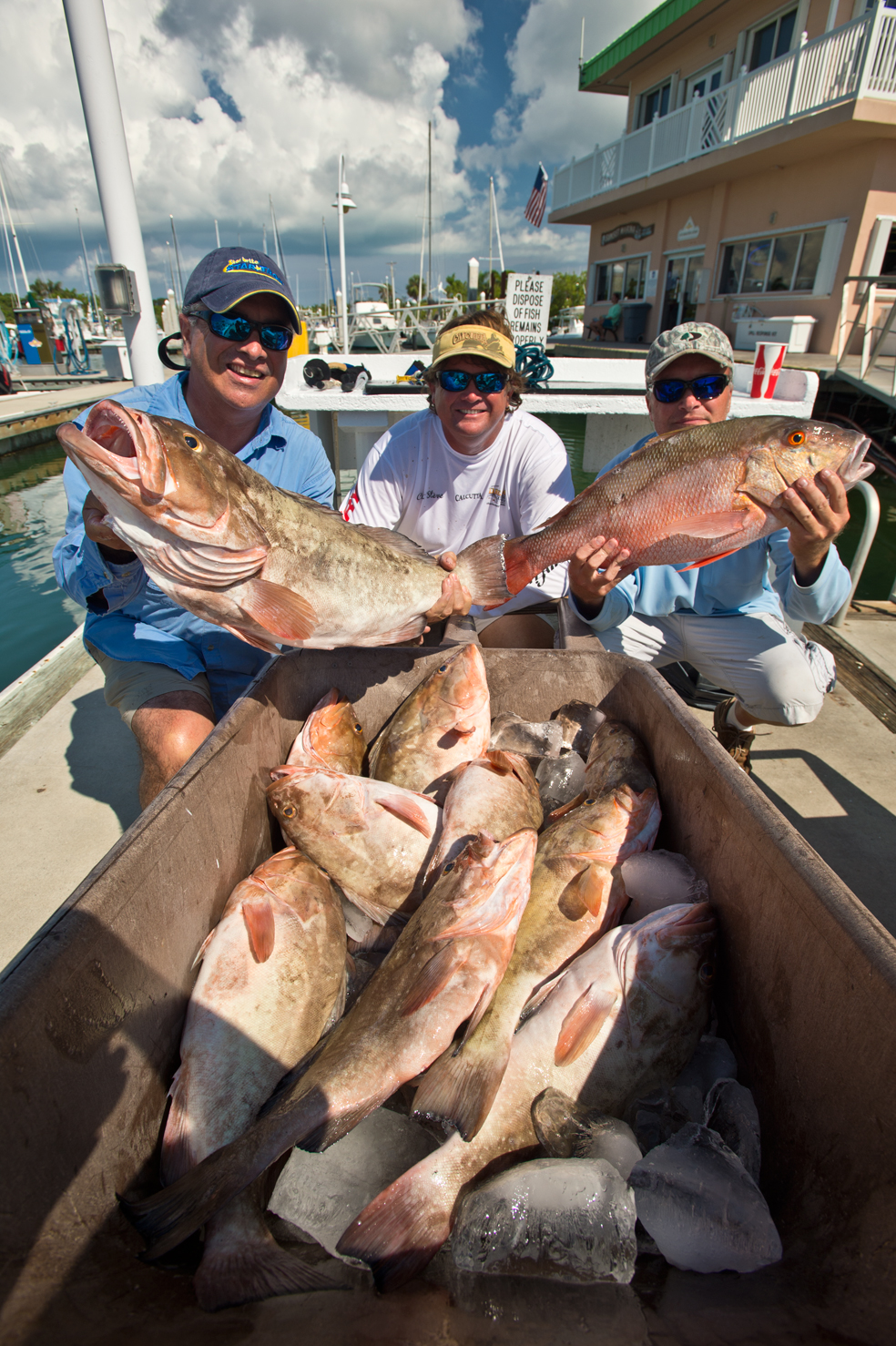 how to catch goliath grouper