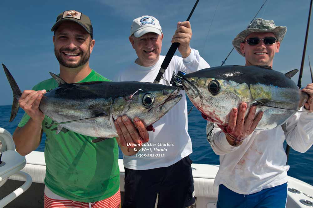 Florida keys fishing report offshore deep sea and reef for Tuna fishing florida
