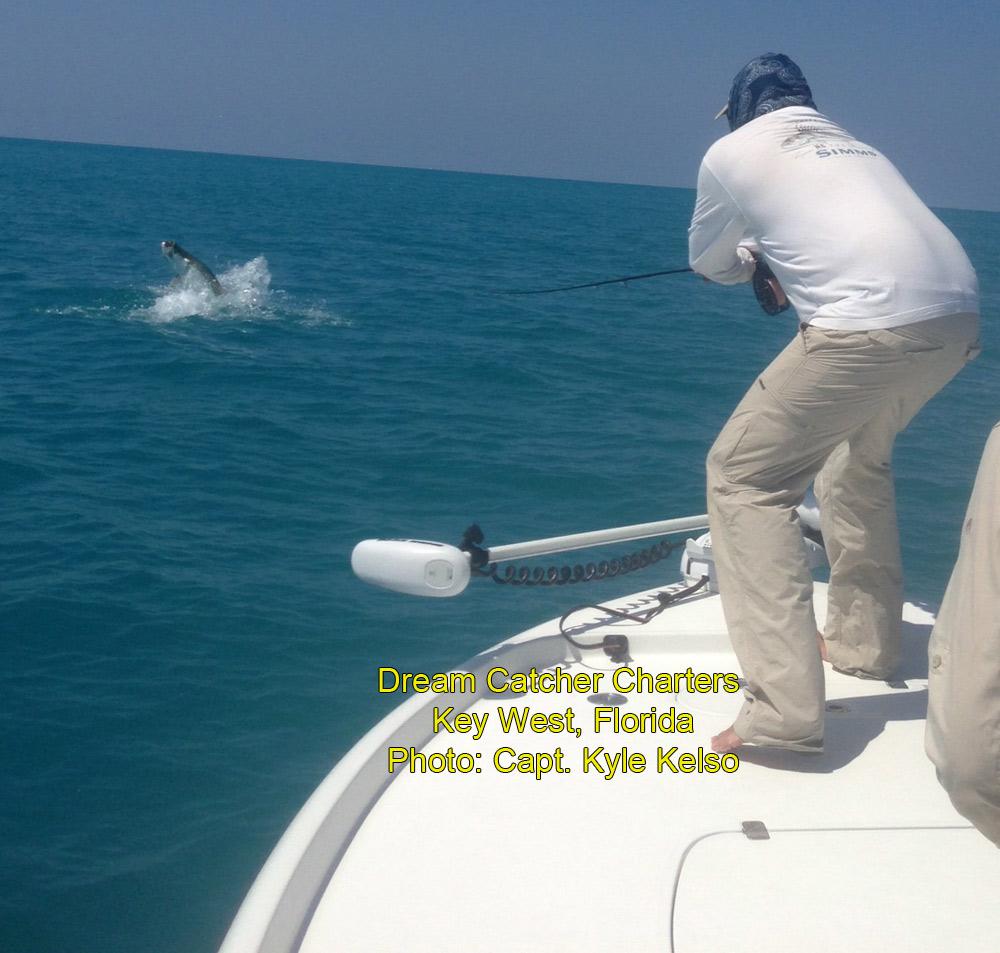 Florida keys fishing report tarpon update florida keys for Fly fishing for tarpon