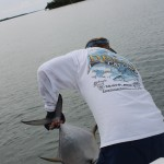 Dream Catcher Charters Capt. Tommy Z boating a client's permit.