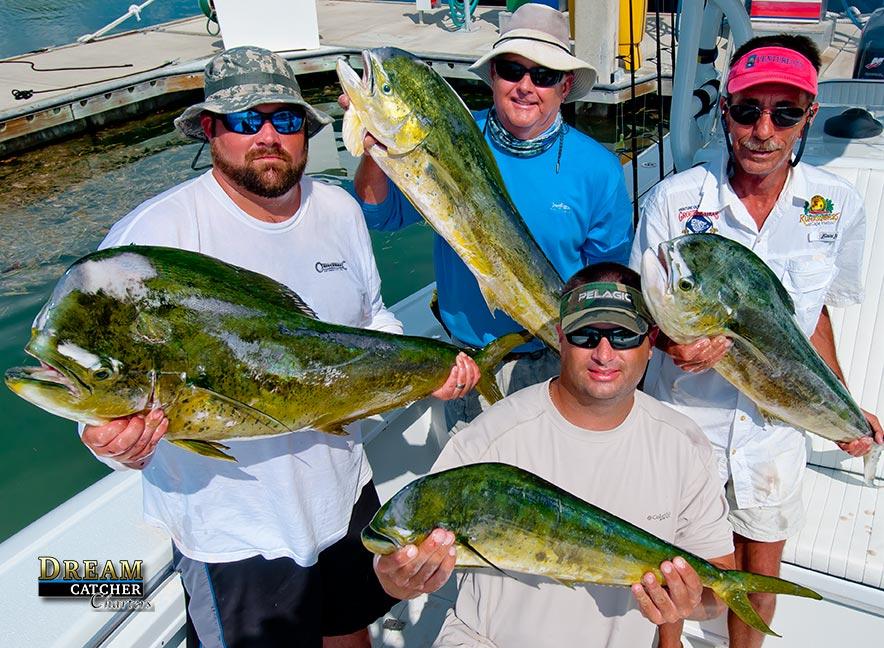 Deep sea fishing florida keys florida keys fishing report for Dolphin deep sea fishing