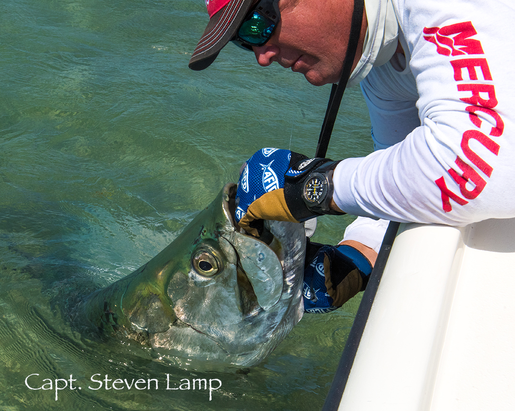 Tarpon Fishing Florida Keys