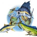 Fishing The World Inc.