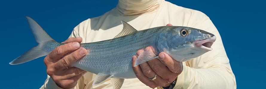 flats fishing bonefish