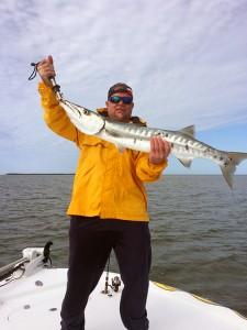 Barracuda Florida Keys