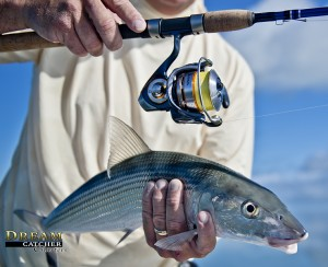 Bonefish caught with A DAIWA
