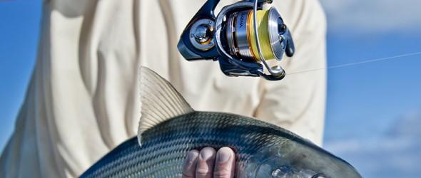 Bonefish caught with A DAIWA